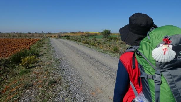 Camino de Santiago in Spain